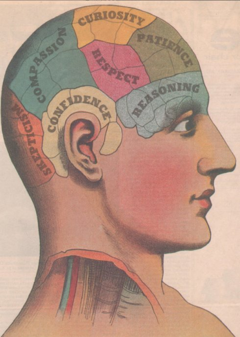 phrenology head_490